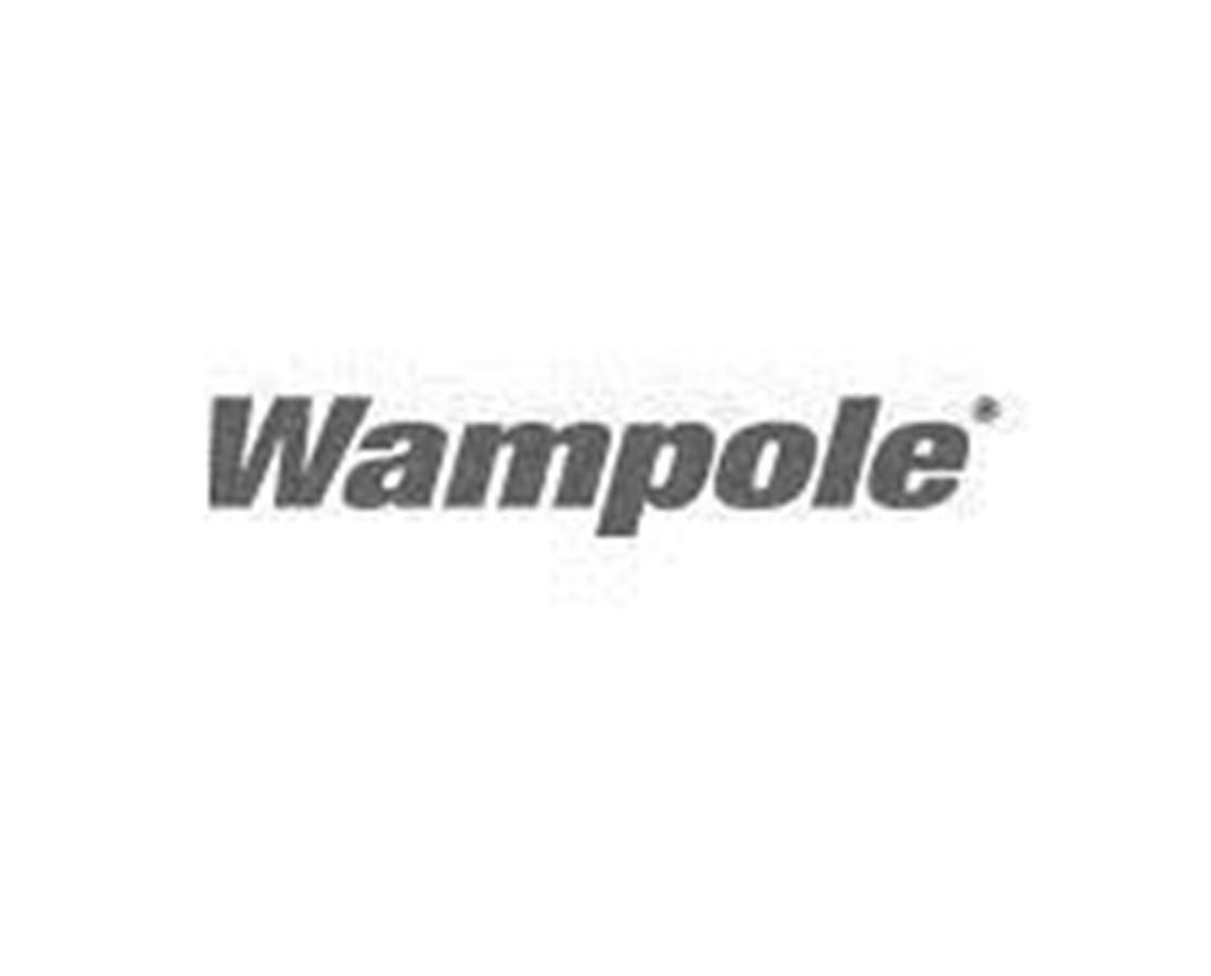 Wampole ColorCard® Streptozyme® ALE46050