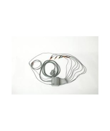 10-Lead ECG Patient Cable, Replaceable Leads CAR007704